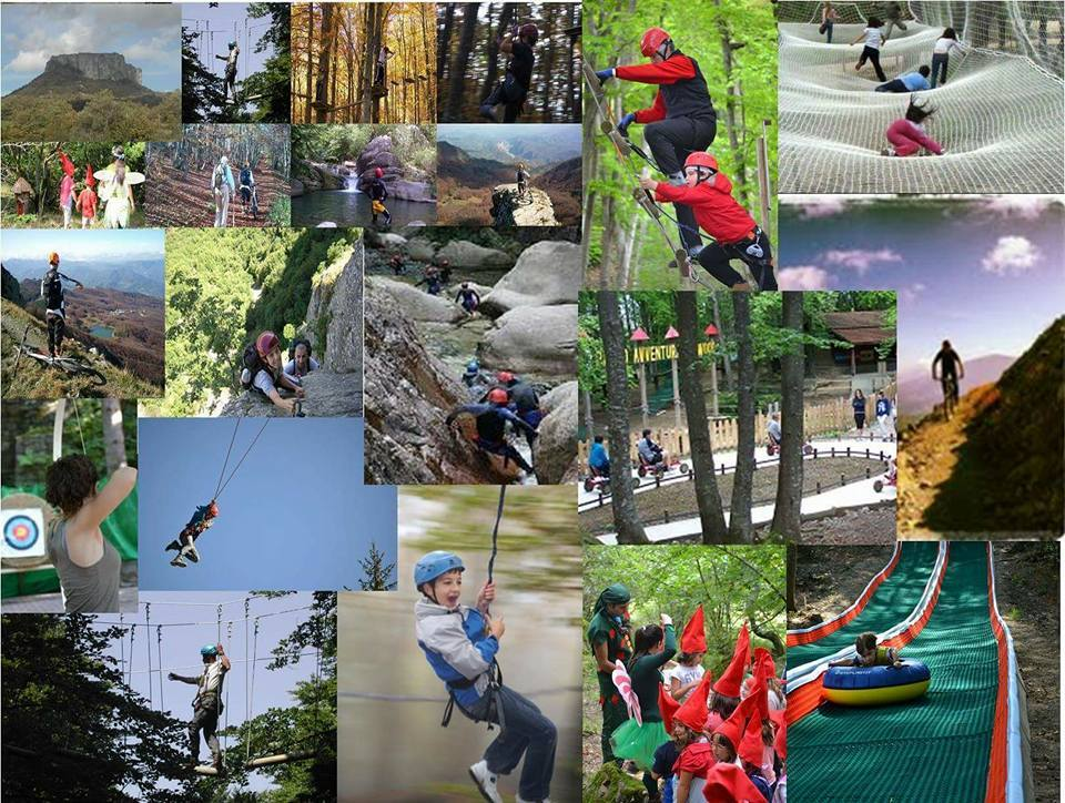Regala le attività del Parco avventura Cerwood