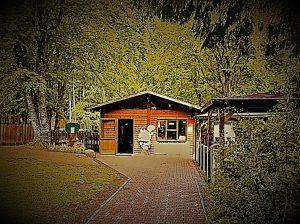 Punto shop nel parco avventura Cerwood