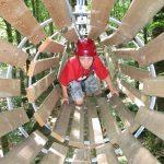 gabbia di legno cerwood