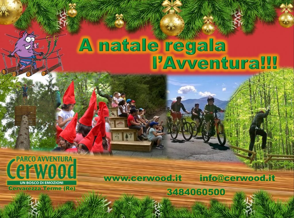 Regala Cerwood per natale!