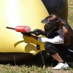 Battaglia di palline colorate - Sportwood